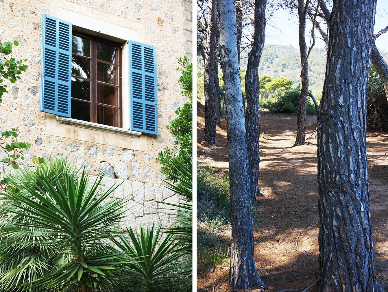 Ein Garten wie in der Provence